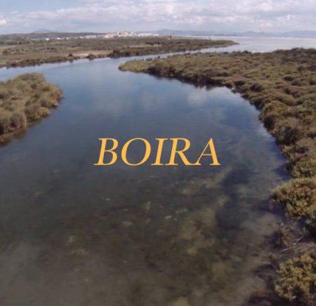 boira 450x436 - Boira