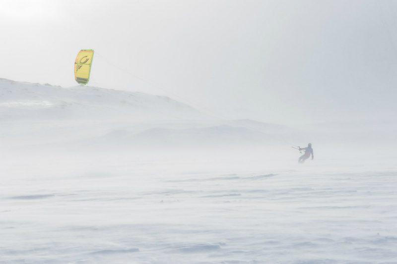 K0A2701 800x533 - Winter Wild
