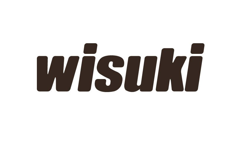 logo2 800x500 - Wisuki PRO x TheKiteMag