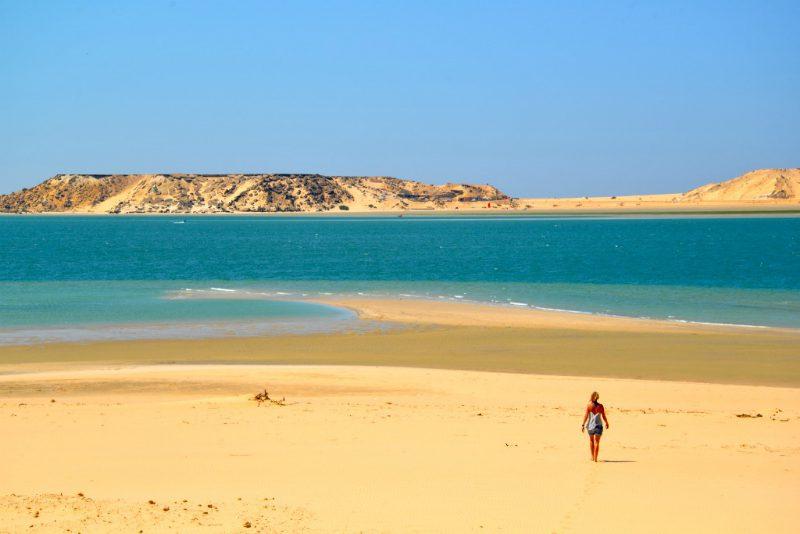 DSC 7382 1024 800x534 - EXPLORA Watersports - Dakhla & Essaouira, Morroco