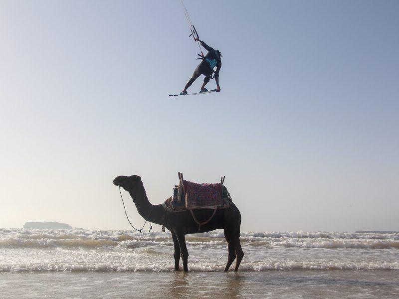 Essaouira 9 800x600 - EXPLORA Watersports - Dakhla & Essaouira, Morroco