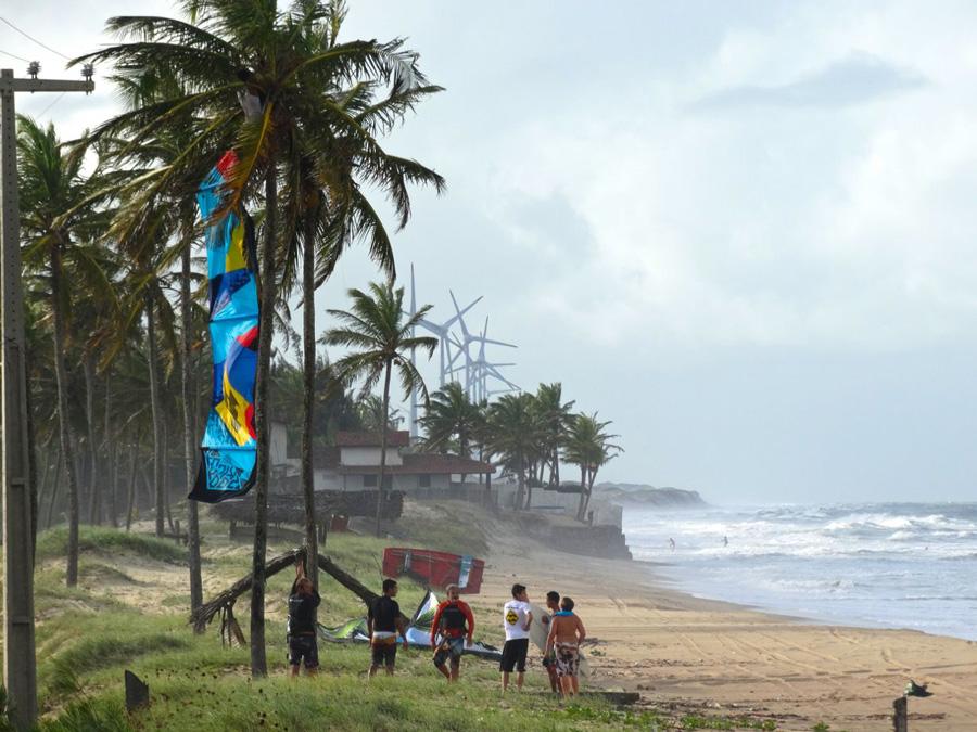 coconut tree - PASSEIO: A family kitesurf trip