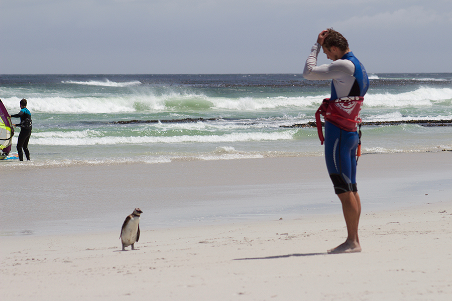 IMG 3740 - Five reasons every kitesurfer should ride in Cape Town