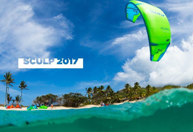 video Sculp 2017 800x549 - Crazy Fly Sculp 2017