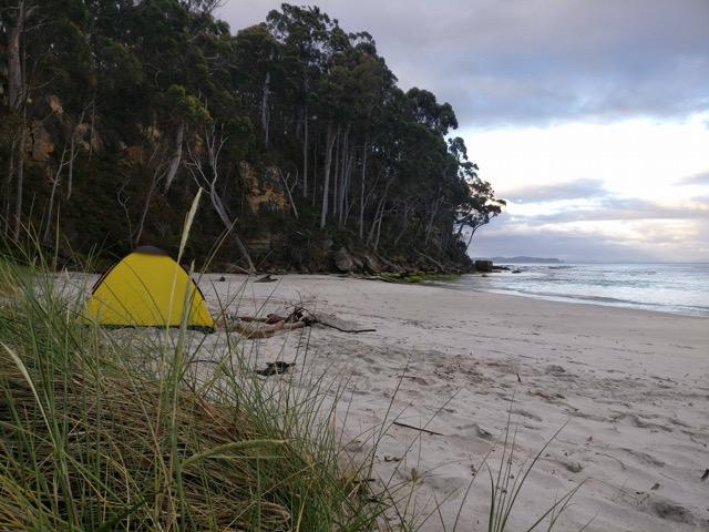 16129909 10154222218867286 569032618 o - Danny Morrice in Tasmania