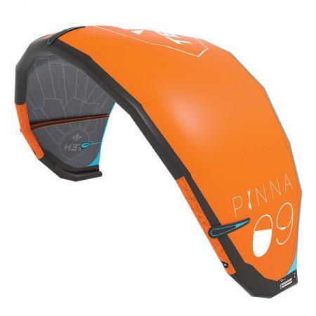 pinna prof3 450x450 - TEN Pinna
