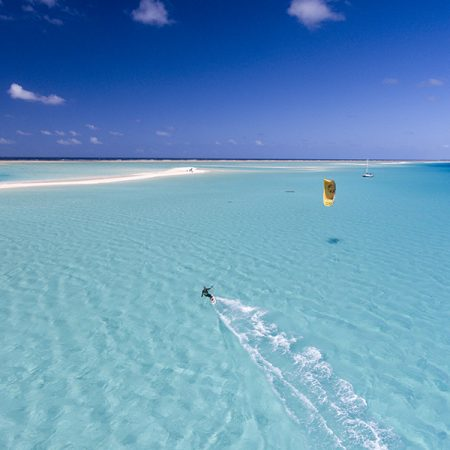 One of these for opening I reckon 2 450x450 - Sharing Paradise With Sharks