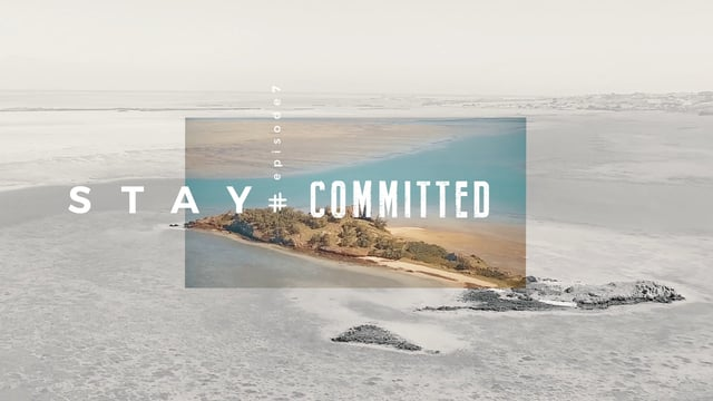 set teixeira stay committed - Set Teixeira - Stay Committed