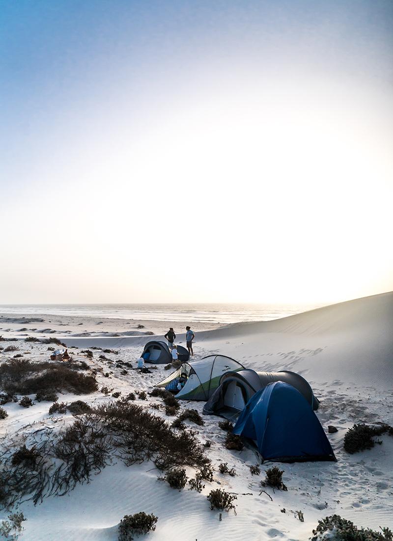 Desert trip high res 7 - Kings of the Desert