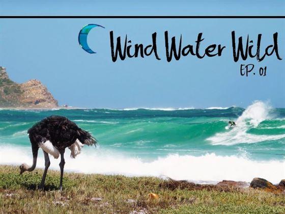 wind water wild 800x600 - Wind Water Wild