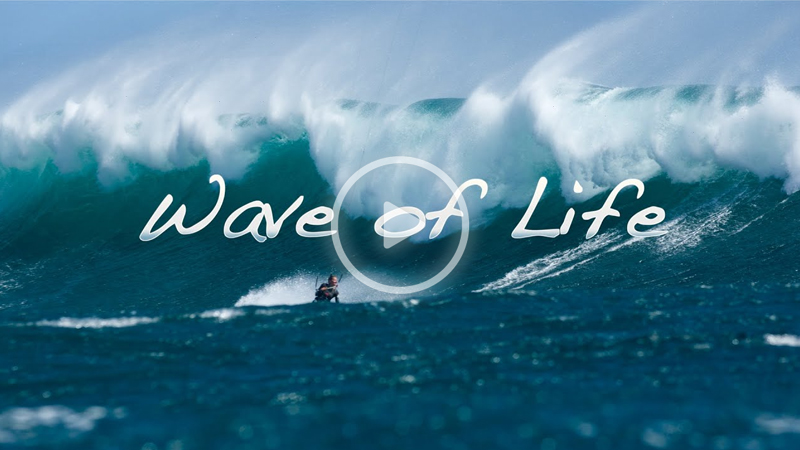 wave of life - WAVE OF LIFE