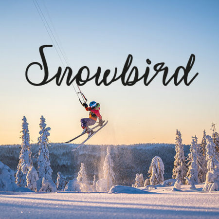by Therese N. Andersen 6 copy 450x450 - Snowbird