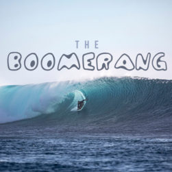 BEN WILSON FIJI 2021 3861SCOTT WINER@FIJICHILI copy 251x251 - The Boomerang