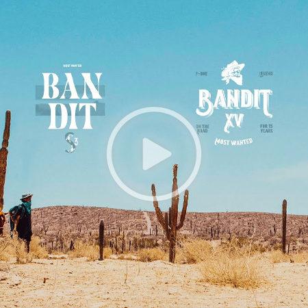 BanditAni 450x450 - Bandit's 15th anniversary