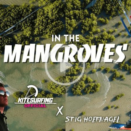 stig TKM thumbnail 2 450x450 - In the Mangroves